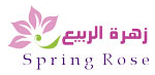 img 26 - BI Consulting Services in Saudi Arabia -  -